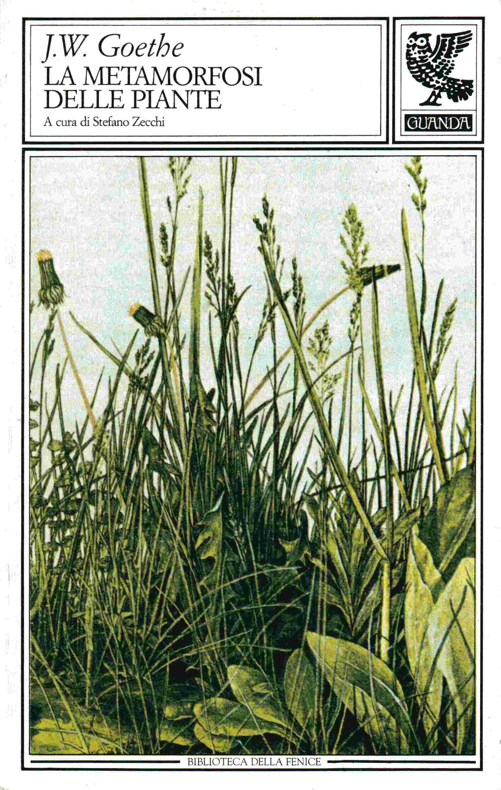 J W Goethe La metamorfosi delle piante e altri scritti sulla scienza della natura